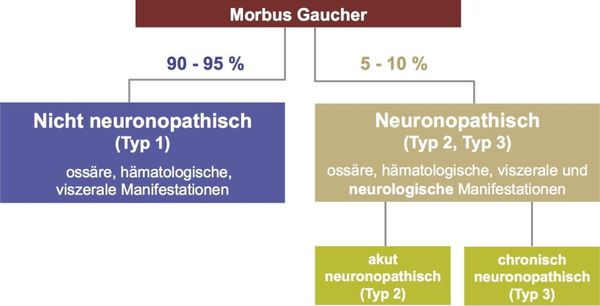 Klassifikation des Morbus Gaucher (nach Rosenbloom BE, Weinreb NJ, 2013)